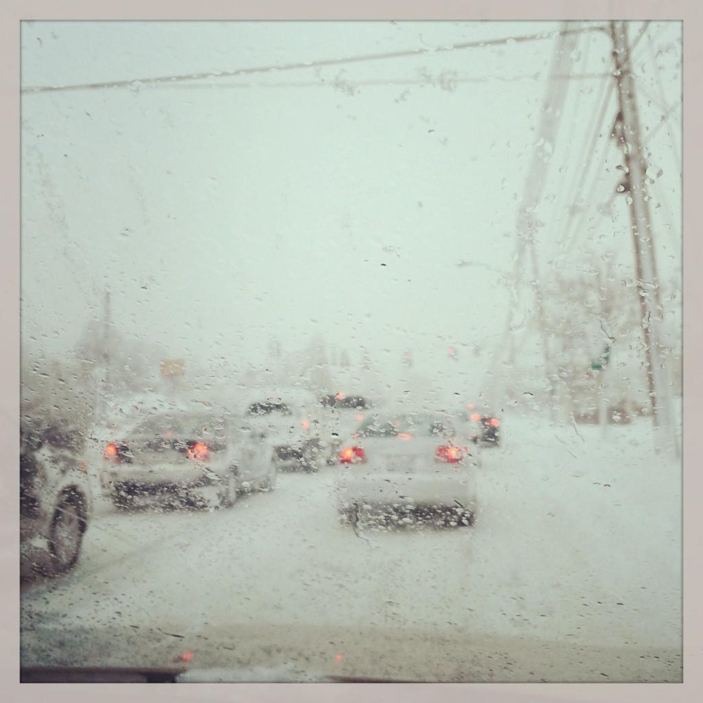 Buffalo Blizzard Drive