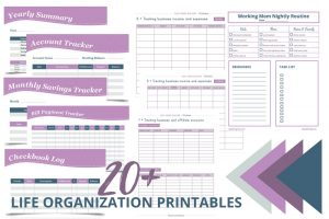 20+ of the Best Life Organization Printables