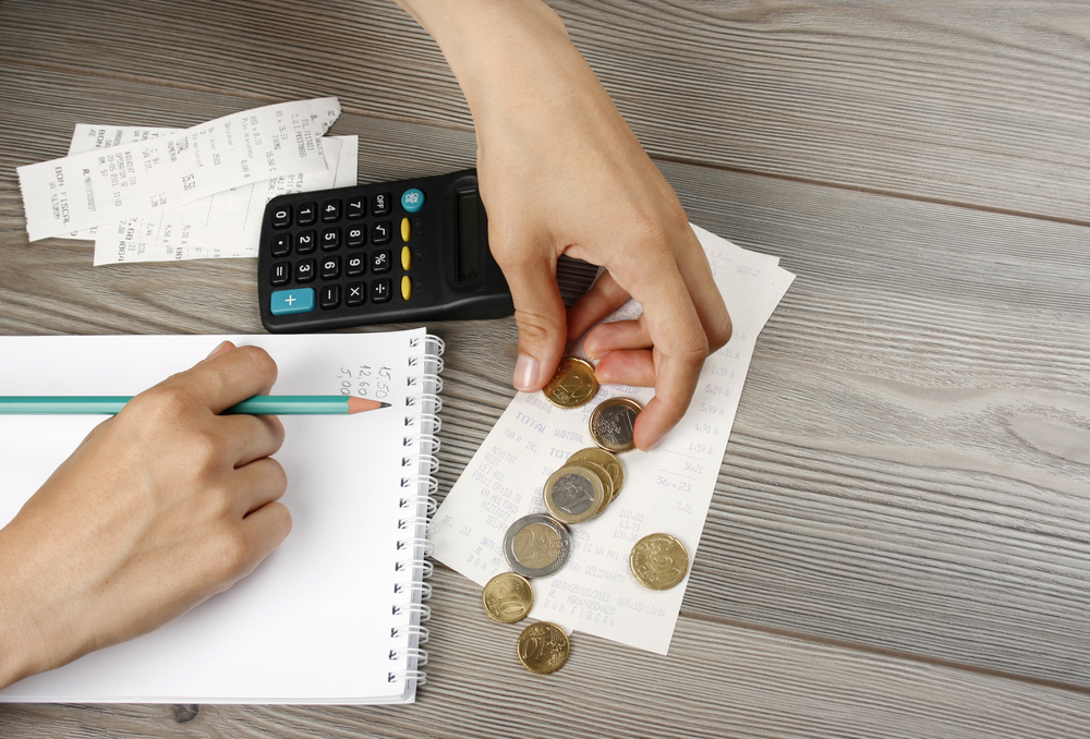 counting the household budget with family budget tools